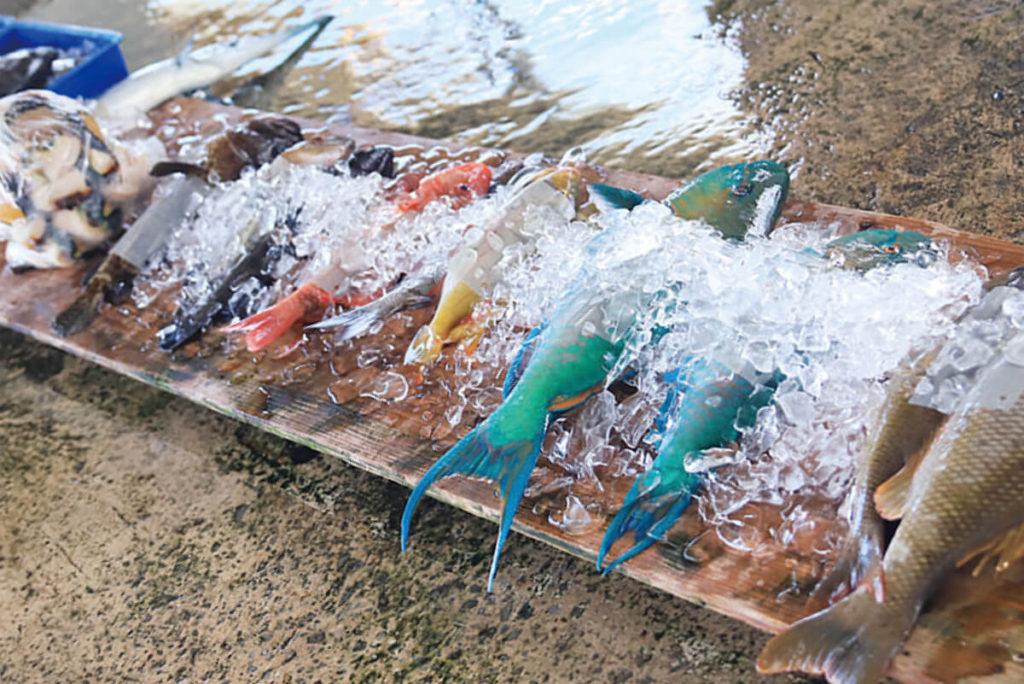 久米島の豊かな海で採れた 色とりどりのお魚