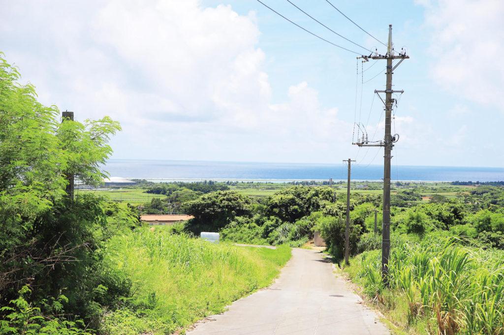 緑美しい田園