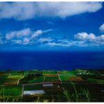 宇江城跡からの景色